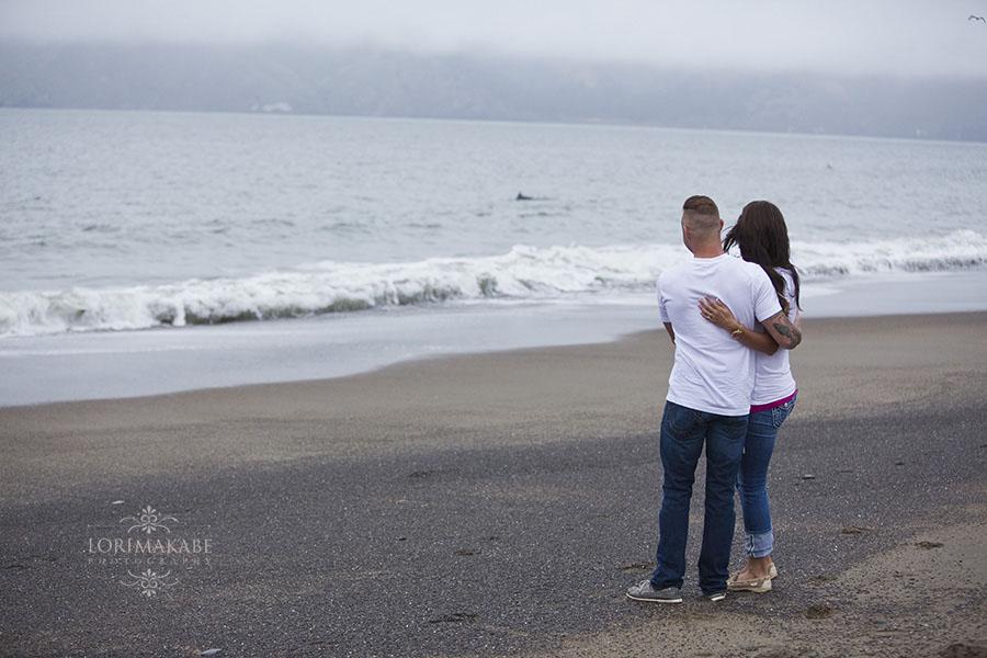 Baker Beach Dolphins